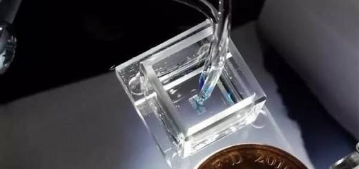 living-tissue-3dprinting_1