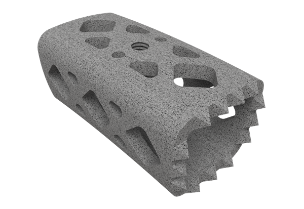 ChoiceSpine_3D printed implant
