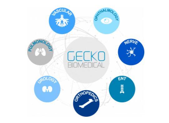 法国Gecko Biomedical公司600万欧元融资,推动组织修复聚合物3D打印材料的工业化