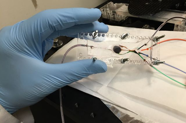 UCLA 3D bioprinter