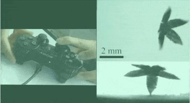 Millimeter robot_control